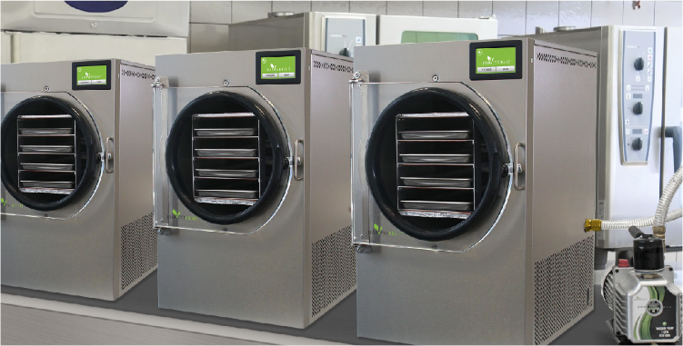 Commercial freeze dryers lined